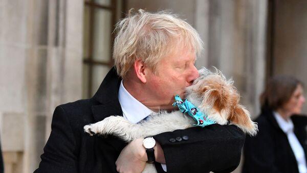 Boris Džonson sa svojim psom - Sputnik Srbija