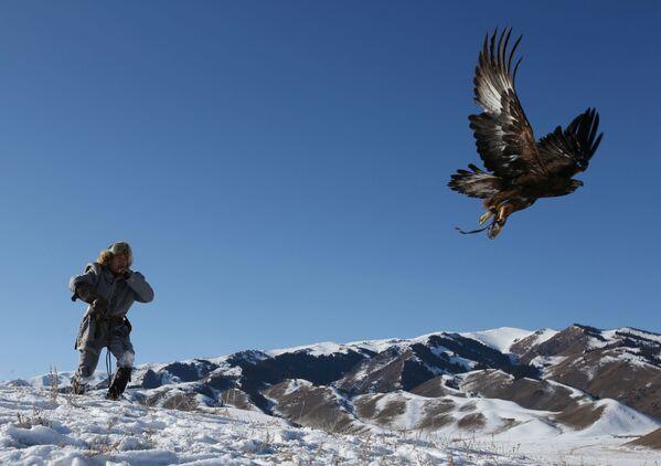Lovac pušta svog pripitomljenog zlatnog orla tokom tradicionalnog lovačkog takmičenja u blizini sela Kajnar u Almatinskoj oblasti. - Sputnik Srbija