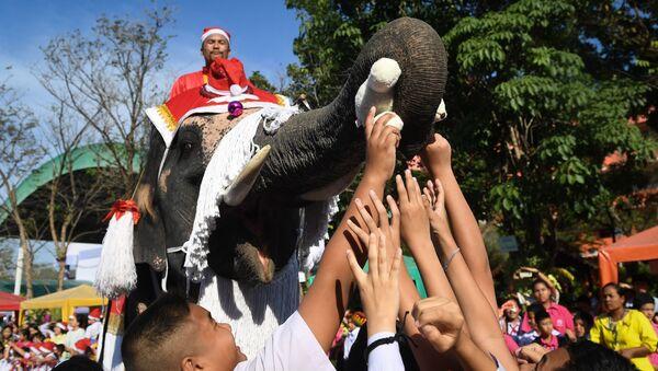 Слон с поклонима за време Божића на Тајланду  - Sputnik Србија