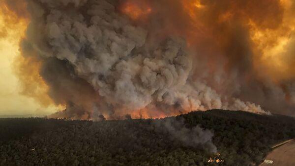 Пожари у Аустралији - Sputnik Србија