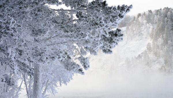Zimski pejzaž na obali reke Jenisej. Temperatura u ovom delu Sibira se spušta do minus 30 stepeni Celzijusa. - Sputnik Srbija