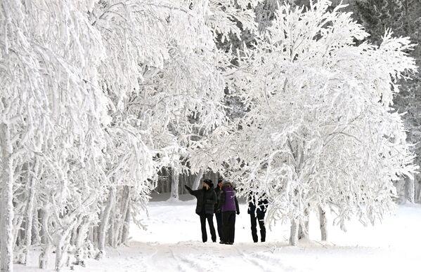 Ljudi šetaju duž obale Jeniseja. - Sputnik Srbija