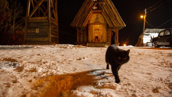 Crna mačka šeta po Drvegradu - Sputnik Srbija