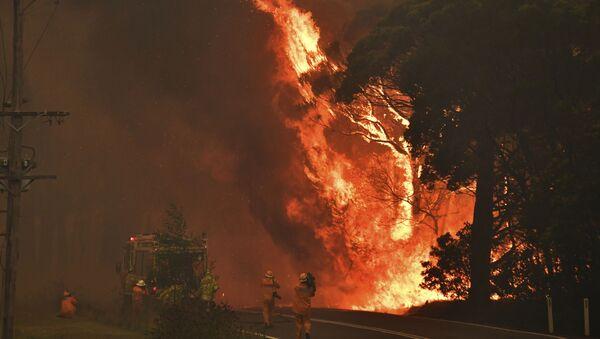 Požari u Australiji - Sputnik Srbija