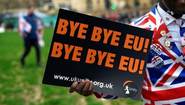 Pristalica bregzita u Londonu nosi plakat na kome piše Doviđenja EU!  - Sputnik Srbija