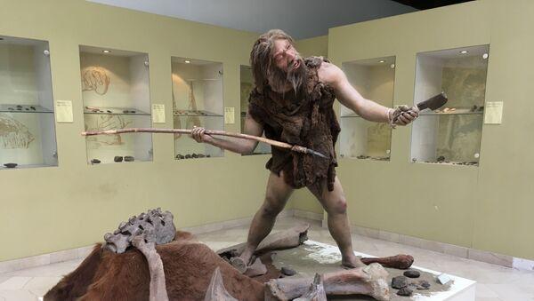 Prikaz figure neandertalca, Muzej Republike Srpske, Banjaluka - Sputnik Srbija