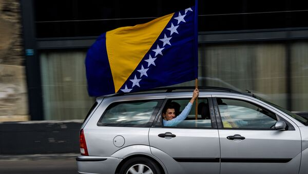 Zastava Bosne i Hercegovine - Sputnik Srbija