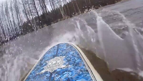 Сурфовање у шуми - Sputnik Србија