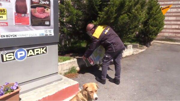Становници Истанбула нашли начин да хране напуштене животиње током полицијског часа  - Sputnik Србија