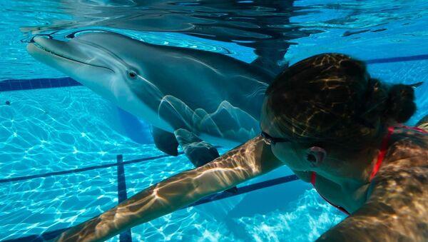 Делфини у Кини - Sputnik Србија