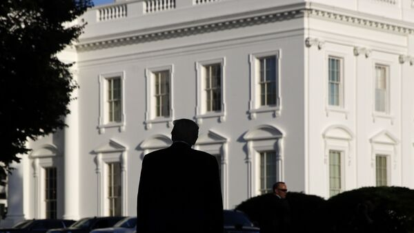 Амерички председник Доналд Трамп испред Беле куће - Sputnik Србија