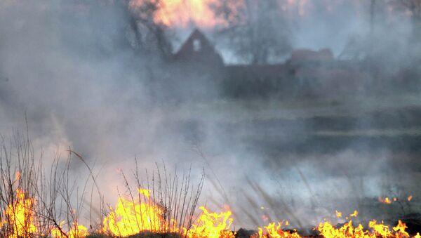 Пожар Чернобиљ - Sputnik Србија