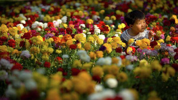 Кинески дечак у цвећу - Sputnik Србија