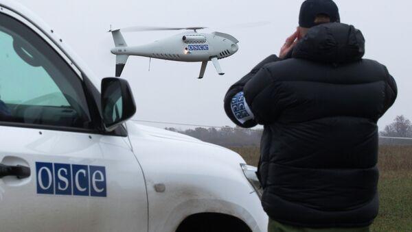 Posmatračka misija OEBS-a u Ukrajini - Sputnik Srbija