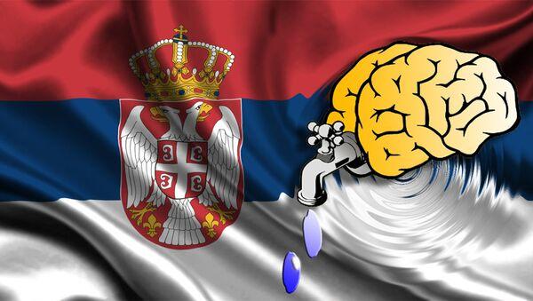 Odliv mozgova iz Srbije- ilustracija - Sputnik Srbija
