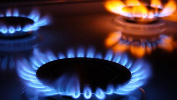 Gas cooker - Sputnik Srbija