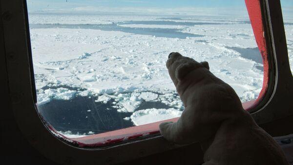 Капитанский мостик атомного ледокола Ямал во время научно-исследовательских работ в Карском море - Sputnik Србија
