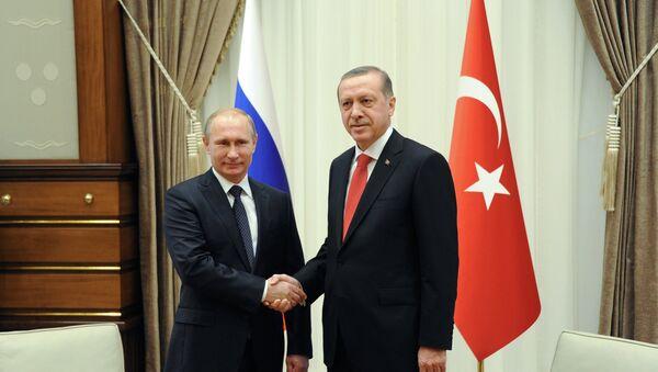 Владимир Путин и Реџеп Тајип Ердоган у Анкари 1. децембра 2014. - Sputnik Србија