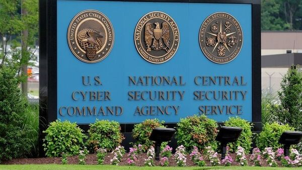 Agencija za nacionalnu bezbednost SAD - Sputnik Srbija