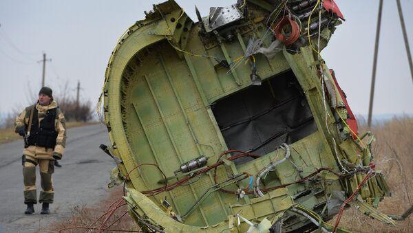 """Deo olupine """"boinga 777"""" MH17 """"Malezija erlajnsa"""" - Sputnik Srbija"""