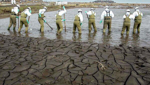 Radnici u oko Fukušime u Japanu - Sputnik Srbija