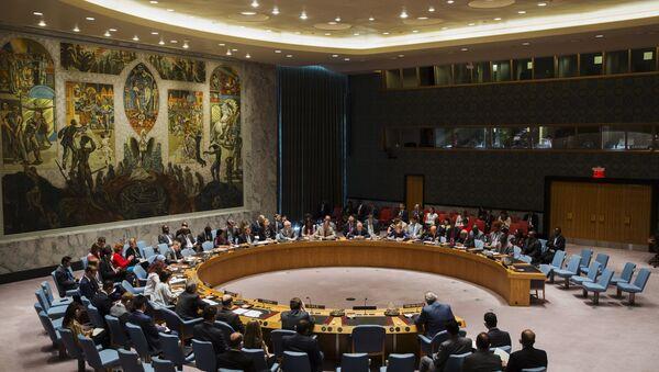 Članovi Saveta bezbednosti Ujedinjenih nacija - Sputnik Srbija