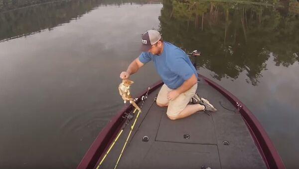 Риболовци у Алабами спасили мачиће из воде - Sputnik Србија