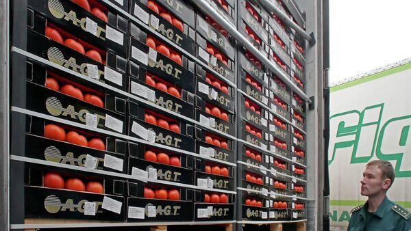 Kontrola kamiona sa hranom na rusko-poljskoj granici - Sputnik Srbija