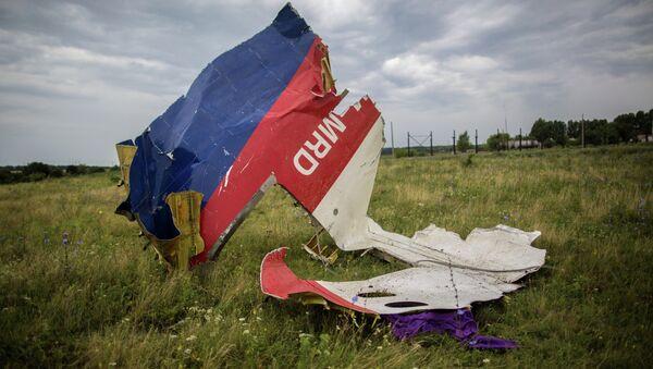 """Olupina malezijskog """"boinga 777"""" sa leta MH17 - Sputnik Srbija"""
