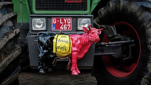 Трактор белгијског млекара уочи протеста у Бриселу - Sputnik Србија