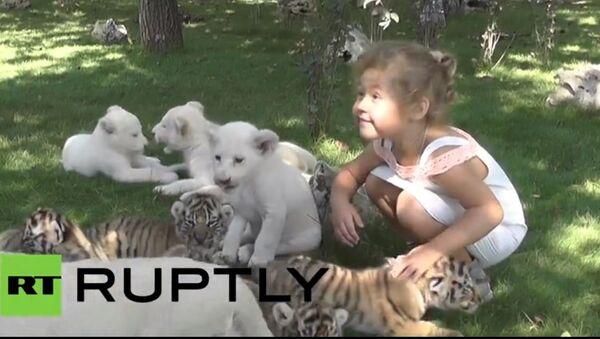 Zoo vrt u Rusiji - Sputnik Srbija
