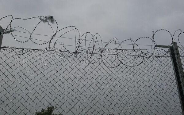Остаци одеће на жичаној огради - Sputnik Србија