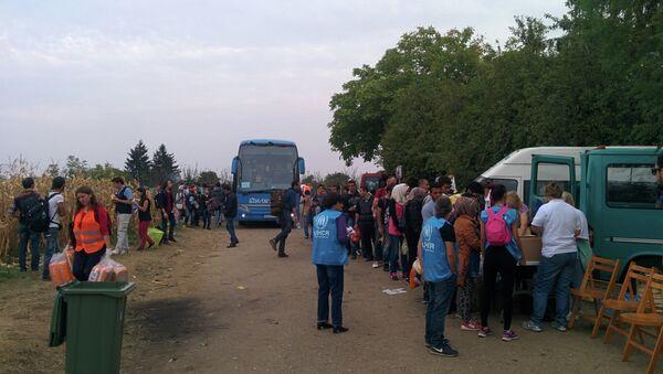 Volonteri UNHCR sa izbeglicama na srpsko-hrvatskoj granici - Sputnik Srbija
