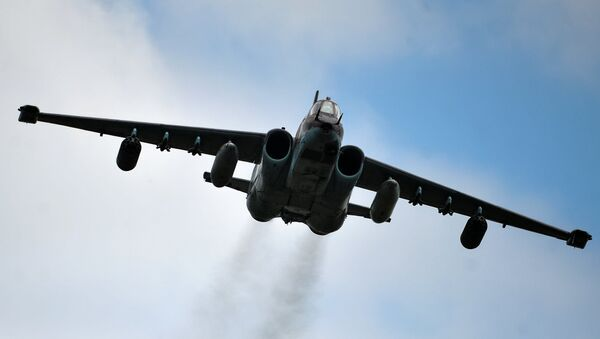 Ловац сухој Су-25 - Sputnik Србија