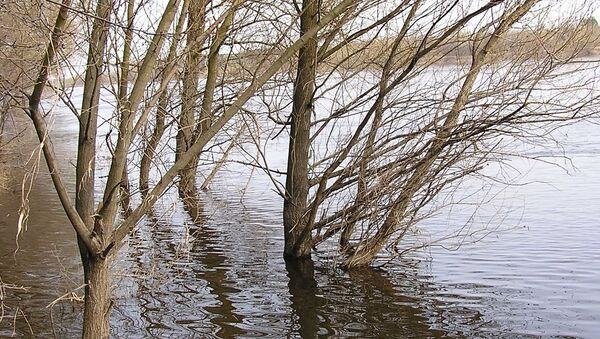 Vodostaj reke, ilustracija - Sputnik Srbija