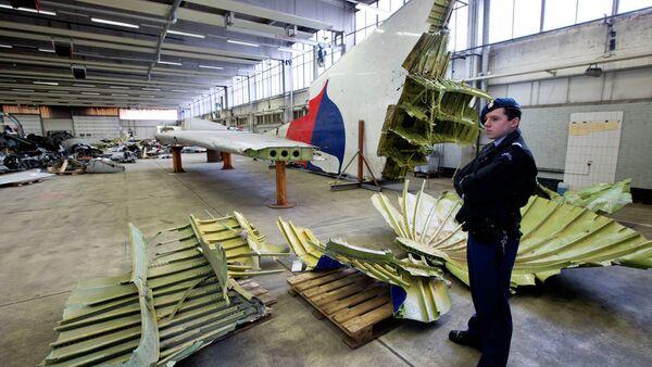 Делови малезијског авиона МХ17 - Sputnik Србија