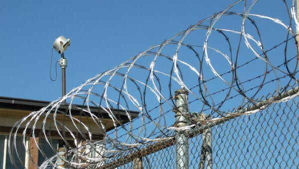 Zatvor, ilustracija - Sputnik Srbija