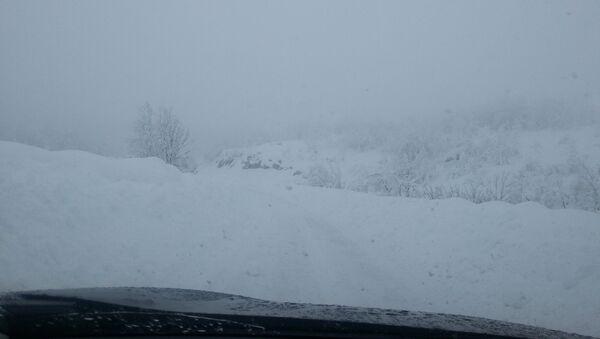 Снежно невреме - Sputnik Србија