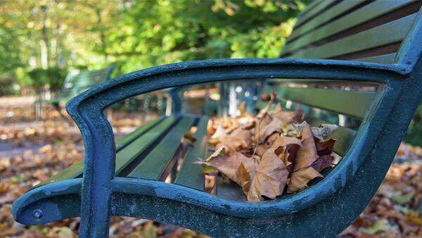 Klupa u parku - Sputnik Srbija