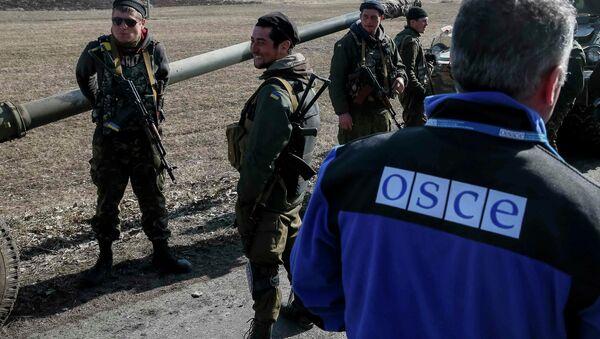 Члан специјалне мисије ОЕБС-а међу конвојем украјинске војске - Sputnik Србија