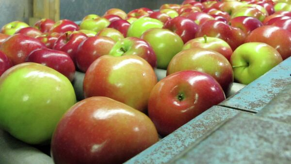 јабуке - Sputnik Србија