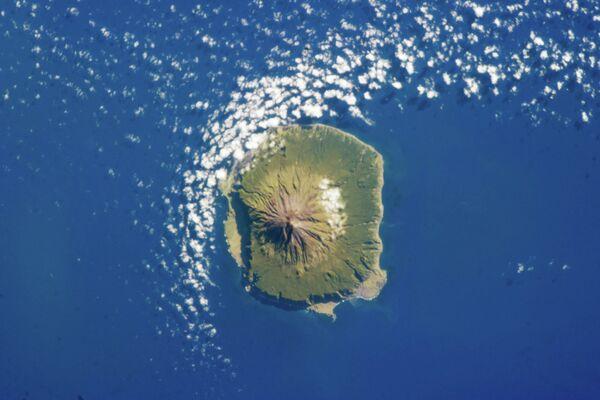Бар Албатрос на острву Тристан да Куња у Атлантском океану - Sputnik Србија