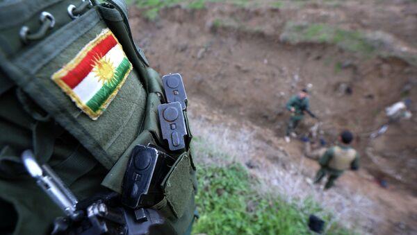 Kurdski vojnik sa našivenom zastavom, koji se u Iraku bori protiv džihadista Islamske države - Sputnik Srbija